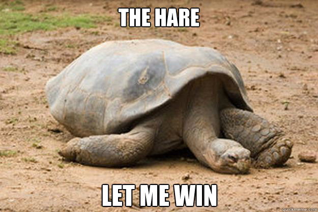 The Hare Let me win  Depression Turtle