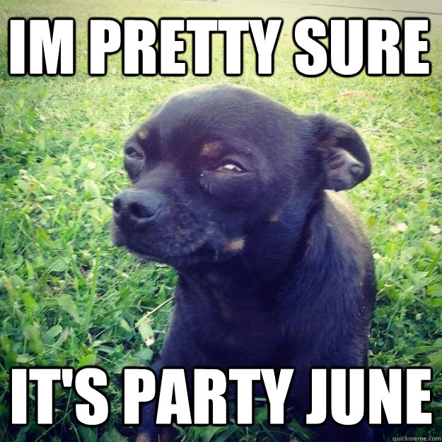 IM Pretty Sure It's Party June - IM Pretty Sure It's Party June  Skeptical Dog