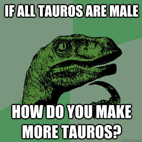 If all tauros are male How do you make more tauros? - If all tauros are male How do you make more tauros?  Misc