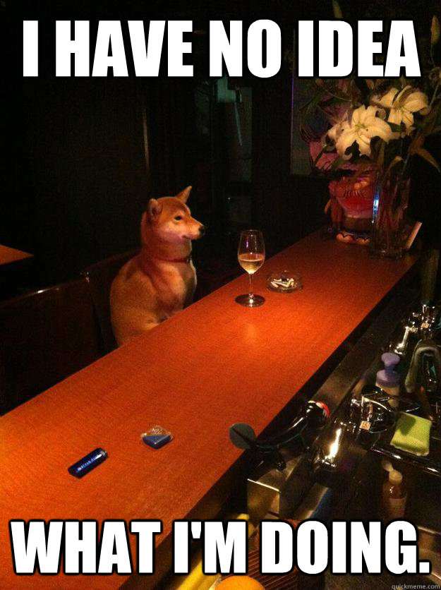 I have no idea what I'm doing. - I have no idea what I'm doing.  Bar Dog