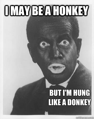 I may be a honkey but i'm hung like a donkey