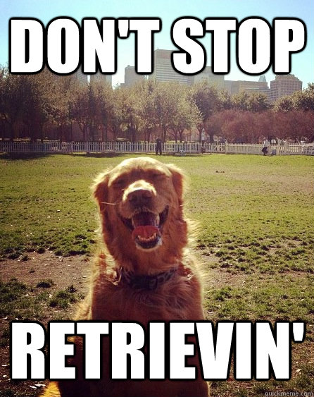 Don't Stop retrievin' - Don't Stop retrievin'  Misc