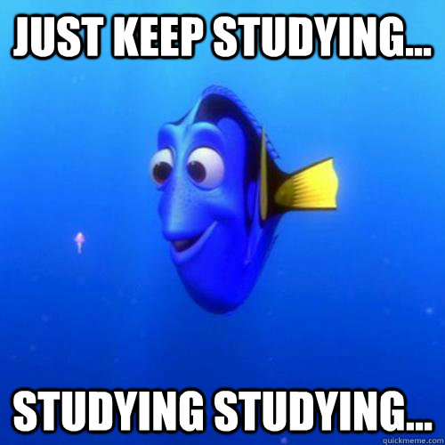 Just keep studying... studying studying... - Just keep studying... studying studying...  dory