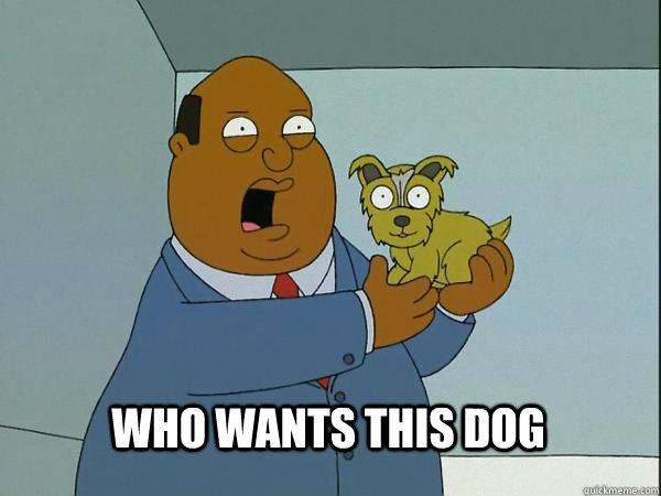 WHO WANTS THIS DOG  Ollie Williams