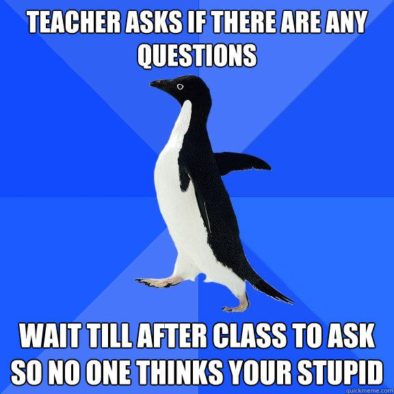 Teacher asks if there are any questions Wait till after class to ask so no one thinks your stupid - Teacher asks if there are any questions Wait till after class to ask so no one thinks your stupid  Socially Awkward Penguin