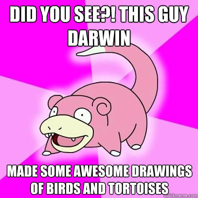 Did You see?! This guy Darwin made some awesome drawings of birds and tortoises - Did You see?! This guy Darwin made some awesome drawings of birds and tortoises  Slowpoke