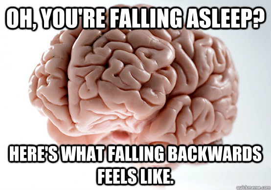 Oh, you're falling asleep? Here's what falling backwards feels like. - Oh, you're falling asleep? Here's what falling backwards feels like.  Scumbag Brain I almost puked
