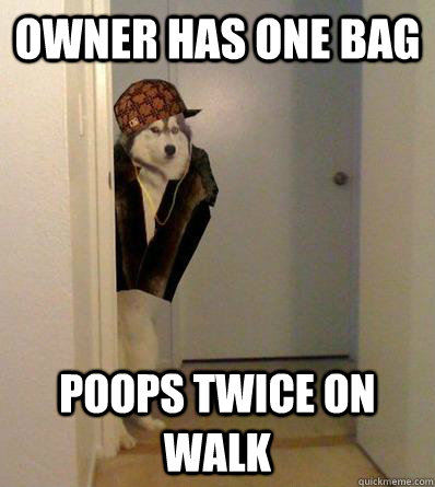 OWNER HAS ONE BAG POOPS TWICE ON WALK - OWNER HAS ONE BAG POOPS TWICE ON WALK  Scumbag dog