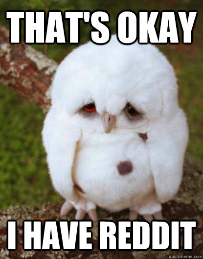 That's okay I have reddit - That's okay I have reddit  Depressed Owl