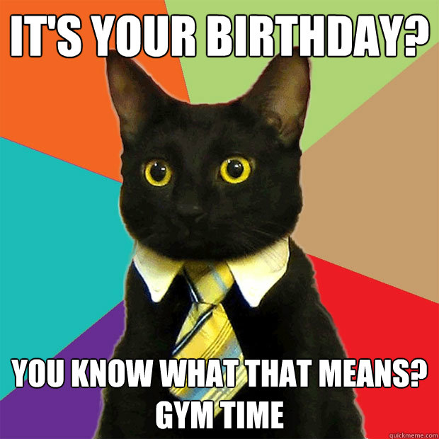 It's your birthday? You know what that means? GYM TIME - It's your birthday? You know what that means? GYM TIME  Business Cat