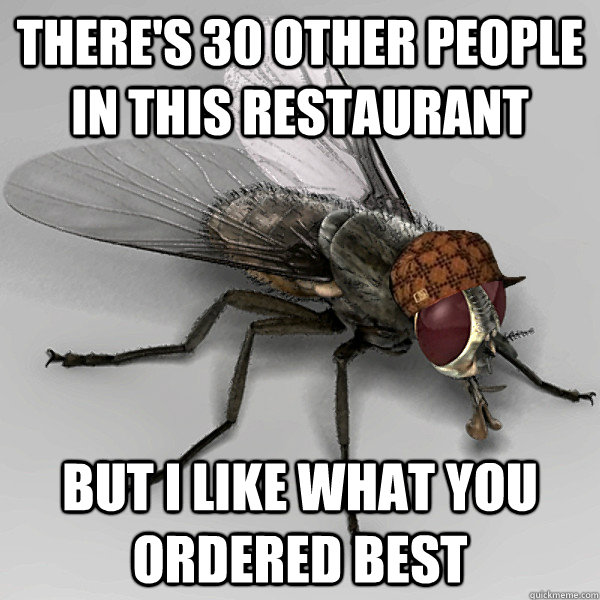 There's 30 other people in this restaurant  But i like what you ordered best - There's 30 other people in this restaurant  But i like what you ordered best  Scumbag Fly