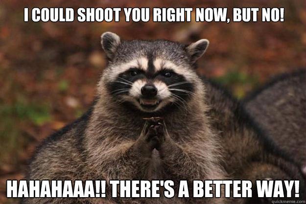 I could shoot you right now, but no! hahahaaa!! There's a better way!  Evil Plotting Raccoon