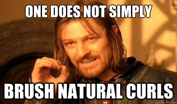 one does not simply Brush natural curls