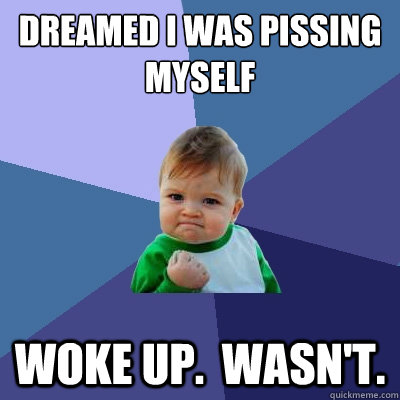 Dreamed I was Pissing myself woke up.  wasn't. - Dreamed I was Pissing myself woke up.  wasn't.  Success Kid