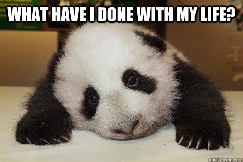 What have I done with my life?   Depressed Panda