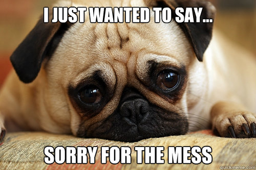I Just Wanted To Say... sorry for the mess  sad pug