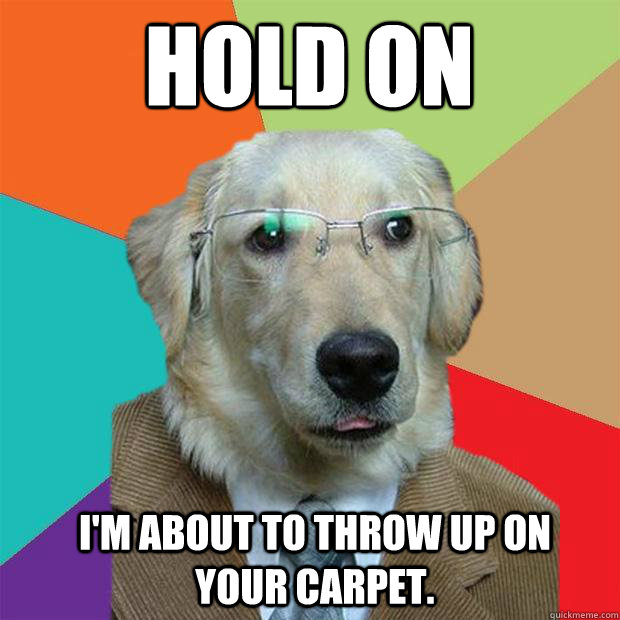 Dog Threw Up On Rug: Hold On I'm About To Throw Up On Your Carpet.