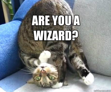 are you a wizard? - Upside down cat - quickmeme Raccoon Eyes Makeup