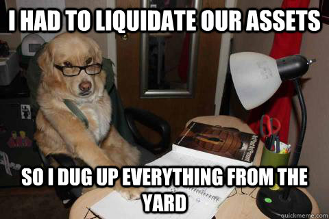 I had To liquidate our assets so i dug up everything from the yard - I had To liquidate our assets so i dug up everything from the yard  Financial Advice Dog