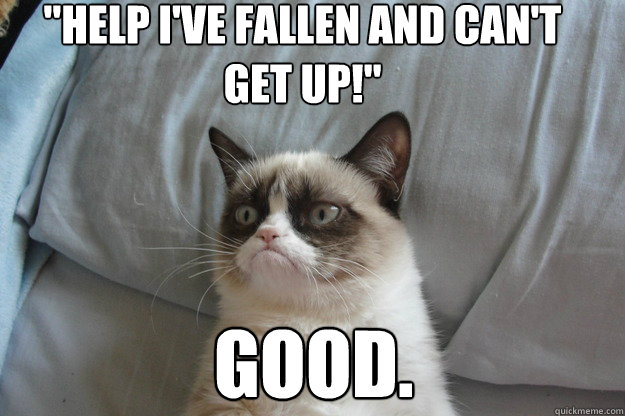 good help i ve fallen and can t get up grumpy cat good quickmeme