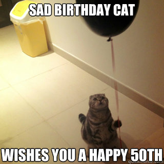 Final, sorry, Sad birthday cat final