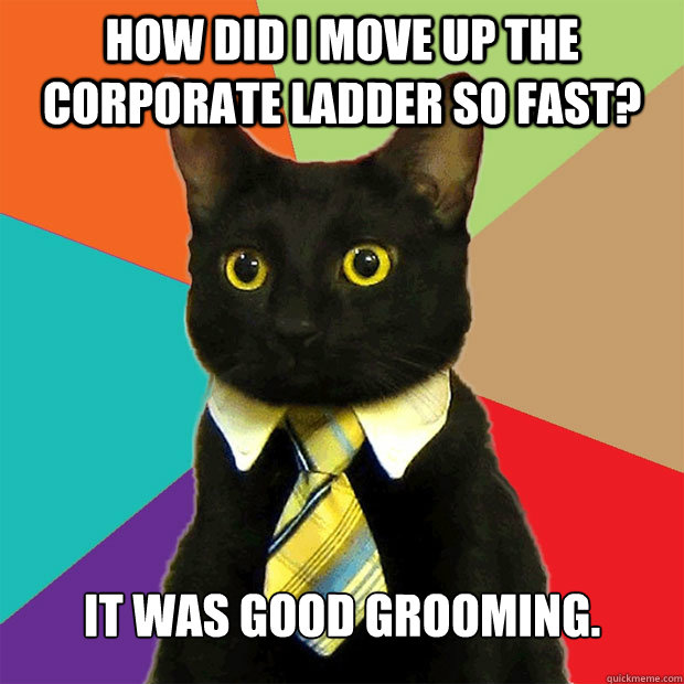 How did I move up the corporate ladder so fast? It was good grooming. - How did I move up the corporate ladder so fast? It was good grooming.  Business Cat