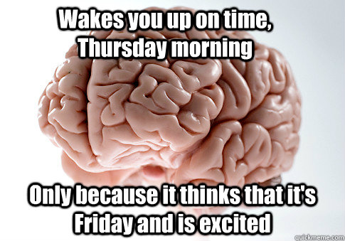 Wakes you up on time, Thursday morning Only because it thinks that it's Friday and is excited - Wakes you up on time, Thursday morning Only because it thinks that it's Friday and is excited  Scumbag Brain