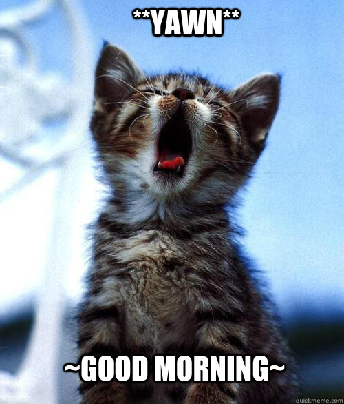 ~Good Morning~ **Yawn**  Good morning