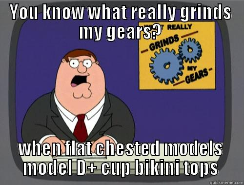 YOU DON'T KNOW WHAT IT'S LIKE - YOU KNOW WHAT REALLY GRINDS MY GEARS? WHEN FLAT CHESTED MODELS MODEL D+ CUP BIKINI TOPS Grinds my gears