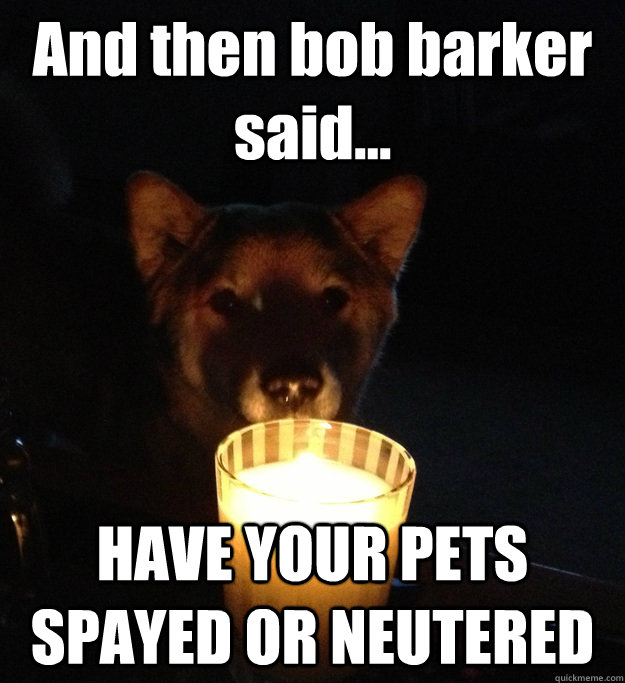 And then bob barker said... HAVE YOUR PETS SPAYED OR NEUTERED