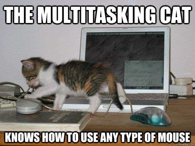5a74f7dc31596ba79409485a5c2a7524b197a1552cfba3502d1ea1d8fd1caf07 the multitasking cat knows how to use any type of mouse