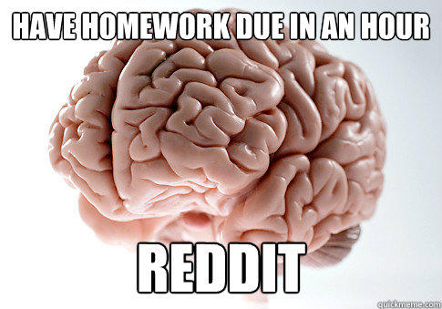 have homework due in an hour REDDIT - have homework due in an hour REDDIT  Scumbag Brain