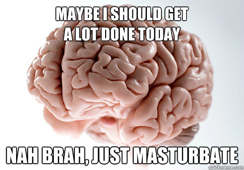 maybe i should get  a lot done today nah brah, just masturbate - maybe i should get  a lot done today nah brah, just masturbate  Scumbag Brain