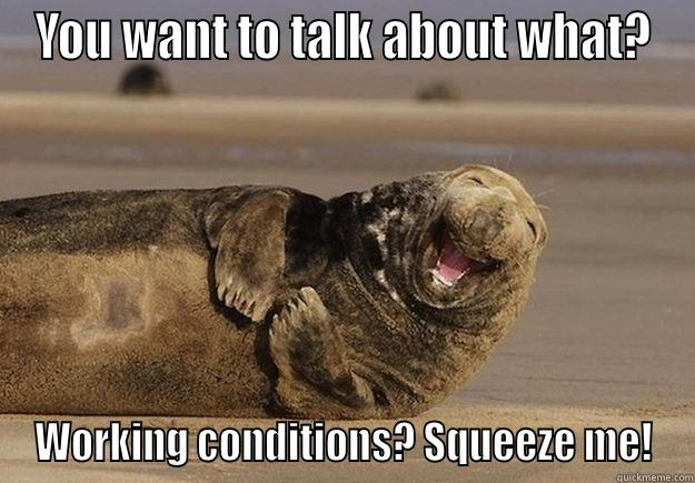 YOU WANT TO TALK ABOUT WHAT? WORKING CONDITIONS? SQUEEZE ME! Sea Lion Brian