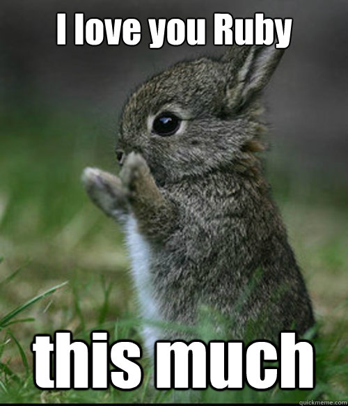 I love you Ruby this much - I love you Ruby this much  Dis much bunny