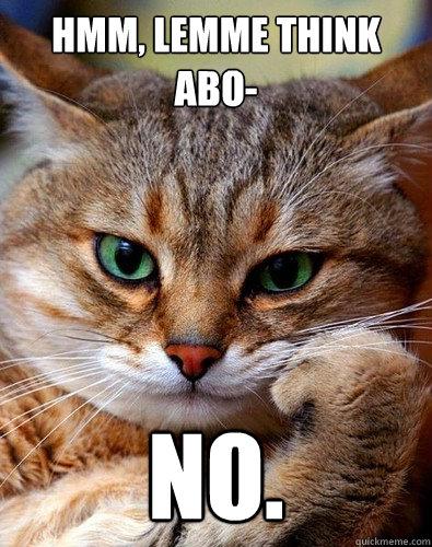 5af83c224d126ae9d0d27eb3ef6fe2b7ce0fb68ea301143fc093dff506bd4bb9 hmm, lemme think abo no no cat quickmeme