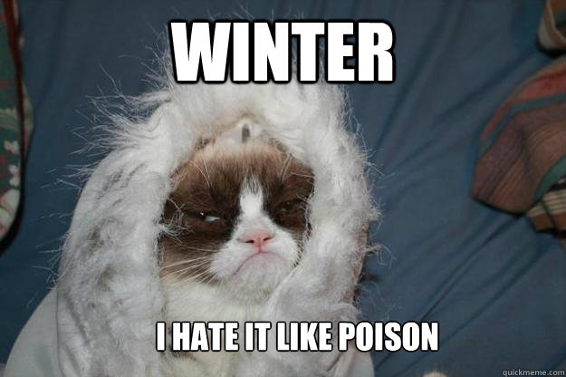winter i hate it like poison