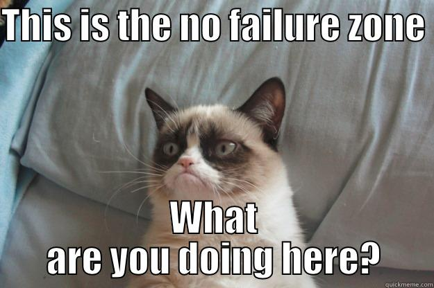 No failure - THIS IS THE NO FAILURE ZONE  WHAT ARE YOU DOING HERE? Grumpy Cat