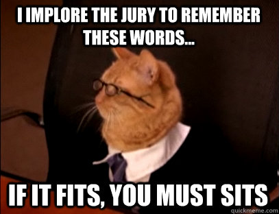 I implore the jury to remember these words... If it fits, you must sits