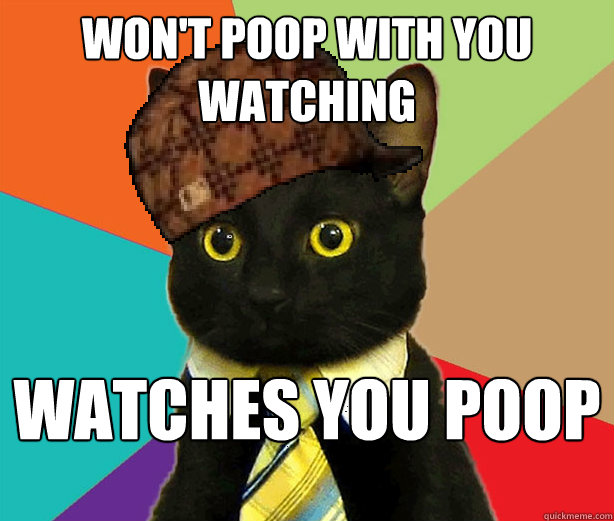 Won't poop with you watching Watches you poop