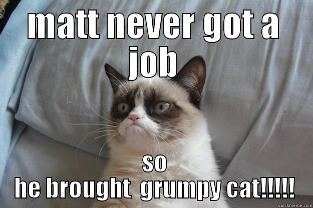 MATT NEVER GOT A JOB SO HE BROUGHT  GRUMPY CAT!!!!! Grumpy Cat