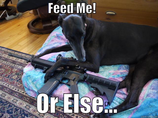 FEED ME!                           OR ELSE... Misc