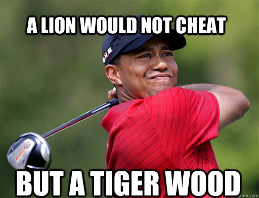 a lion would not cheat but a tiger wood - a lion would not cheat but a tiger wood  tigerwood