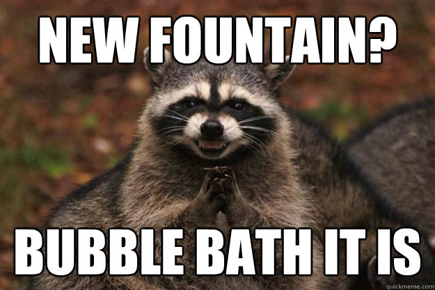 5b9ce41934fed9131d079180e415b4a0eb67ced33fb8cd2e82fffa7dadbe0a62 new fountain? bubble bath it is evil plotting raccoon quickmeme