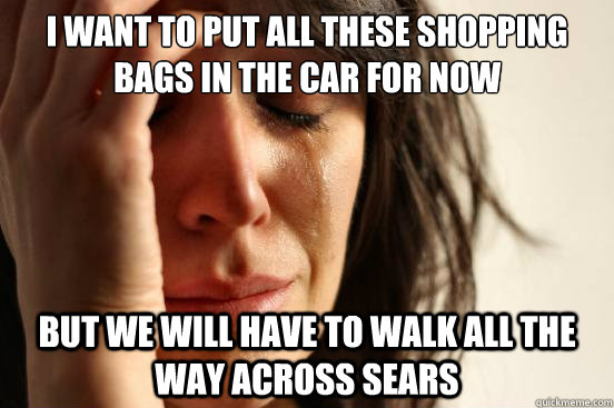 I want to put all these shopping bags in the car for now but we will have to walk all the way across sears - I want to put all these shopping bags in the car for now but we will have to walk all the way across sears  First World Problems