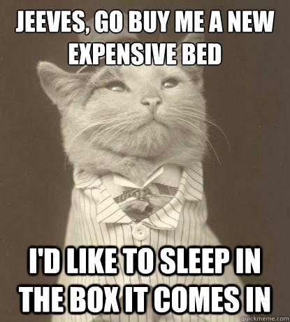 Jeeves, go buy me a new expensive bed   I'd like to sleep in the box it comes in - Jeeves, go buy me a new expensive bed   I'd like to sleep in the box it comes in  Aristocat