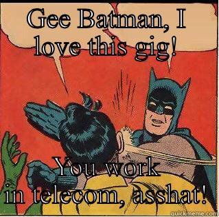 GEE BATMAN, I LOVE THIS GIG! YOU WORK IN TELECOM, ASSHAT! Slappin Batman