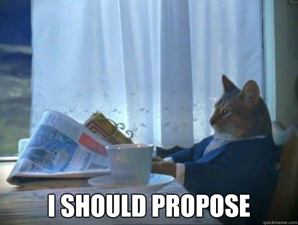 I should propose -  I should propose  morning realization newspaper cat meme
