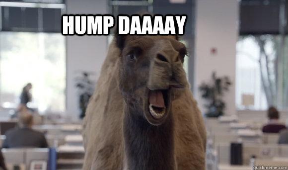 hump daaaay  hump day