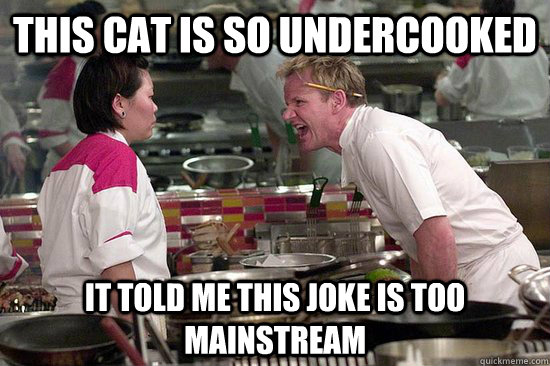 THIS CAT IS SO UNDERCOOKED IT TOLD ME THIS JOKE IS TOO MAINSTREAM - THIS CAT IS SO UNDERCOOKED IT TOLD ME THIS JOKE IS TOO MAINSTREAM  Misc